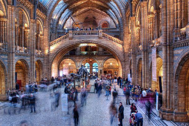 Лондонский музей естествознания - один из самых известных британских музеев