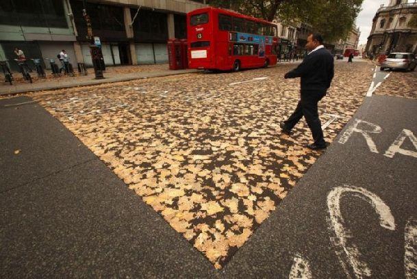 К концу октября в Лондоне начинается обильный листопад, придавая городу еще больший шарм